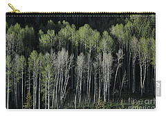 Aspen Spring Carry-all Pouch