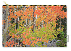 Carry-all Pouch featuring the photograph Aspen Stoplight by David Chandler