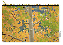 Carry-all Pouch featuring the photograph Aspen Watching You by David Chandler
