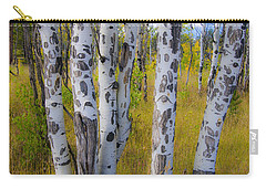 Carry-all Pouch featuring the photograph Aspens by Gary Lengyel