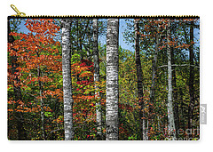 Carry-all Pouch featuring the photograph Aspens In Fall Forest by Elena Elisseeva