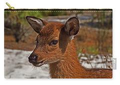 Assateague Island Sika Deer Fawn Carry-all Pouch