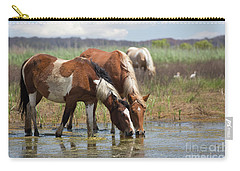 Assateague Ponies Tale Drink Carry-all Pouch