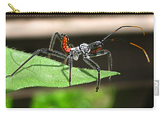 Assault Bug Carry-all Pouch by Donna Brown