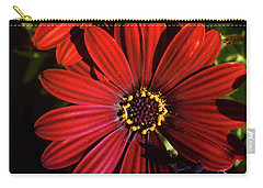 Aster Coming Out Of The Dark Carry-all Pouch