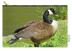 Carry-all Pouch featuring the photograph At A Standstill by Kathy Kelly