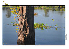 Atchafalaya Basin 22 Carry-all Pouch