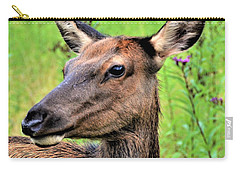 Attentive Yearling Carry-all Pouch