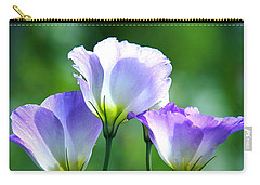Carry-all Pouch featuring the photograph August Echoes by Byron Varvarigos