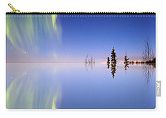 Aurora Mirrored Carry-all Pouch