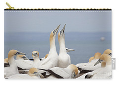 Australasian Gannets Courting Carry-all Pouch