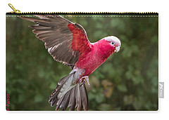 Australian Galah Parrot In Flight Carry-all Pouch