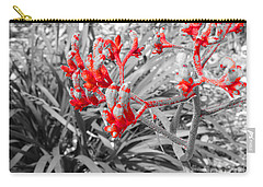 Australian Kangaroo Paws In Kings Park - Perth Carry-all Pouch