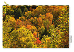 Autumn At Acadia Carry-all Pouch by Brent L Ander