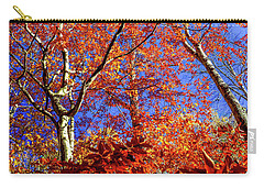 Autumn Blaze Carry-all Pouch by Karen Wiles