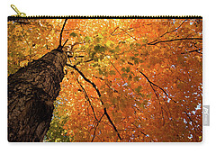 Autumn Canopy In Maine Carry-all Pouch