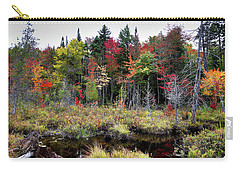 Carry-all Pouch featuring the photograph Autumn Color In The Adirondacks by David Patterson