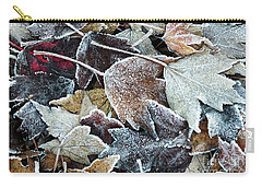 Carry-all Pouch featuring the photograph Autumn Ends, Winter Begins 1 by Linda Lees