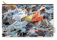Carry-all Pouch featuring the photograph Autumn Ends, Winter Begins 3 by Linda Lees