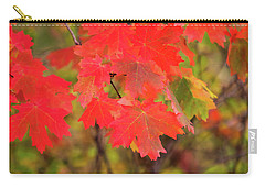 Carry-all Pouch featuring the photograph Autumn Flash by Bryan Carter