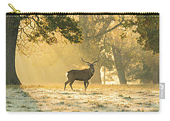 Carry-all Pouch featuring the photograph Autumn Frost by Scott Carruthers