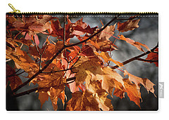 Carry-all Pouch featuring the photograph Autumn Gray by Kimberly Mackowski