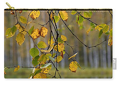 Autumn  Carry-all Pouch by Jouko Lehto