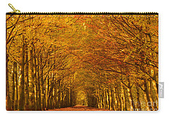 Autumn Lane In An Orange Forest Carry-all Pouch