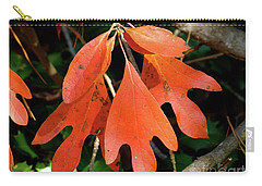 Autumn Sassafras Leaves Carry-all Pouch