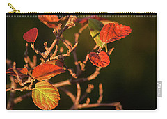 Autumn Shining Carry-all Pouch