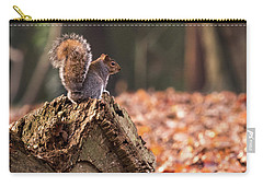 Autumn Squirrel 3 Square Carry-all Pouch