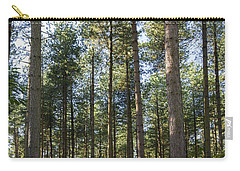 Autumn Tranquil Forest Carry-all Pouch
