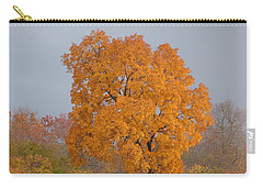Carry-all Pouch featuring the photograph Autumn Tree by Donald C Morgan