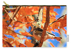 Autumn Warbler Carry-all Pouch