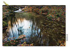 Autumnal Pond  Carry-all Pouch by Yuri Santin