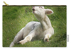 Avebury Lamb Carry-all Pouch