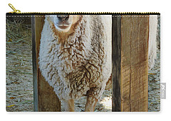 Awassi Sheep Carry-all Pouch