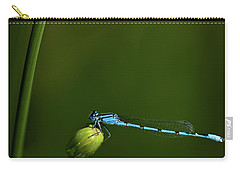 Azure Damselfly-coenagrion Puella Carry-all Pouch