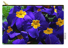 Carry-all Pouch featuring the photograph Azure Primrose by Michiale Schneider