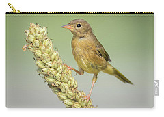 Baby Common Yellow Throat Warbler Carry-all Pouch