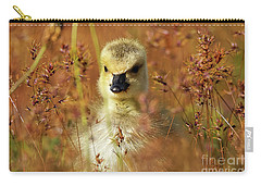 Baby Cuteness - Young Canada Goose Carry-all Pouch