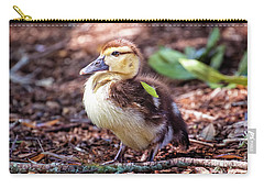 Baby Duck Sitting Carry-all Pouch by Stephanie Hayes