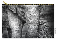 Baby Elephant 1 Carry-all Pouch