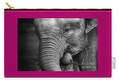 Baby Elephant Close Up Carry-all Pouch
