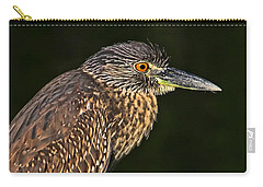 Carry-all Pouch featuring the photograph Baby Face - Yellow-crowned Night Heron  by HH Photography of Florida