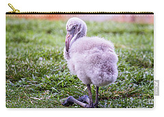 Baby Flamingo Sitting Carry-all Pouch by Stephanie Hayes