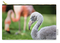 Baby Flamingo With Mom In Background Carry-all Pouch