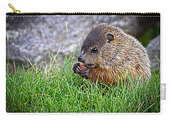 Baby Groundhog Eating Carry-all Pouch by Bob Orsillo
