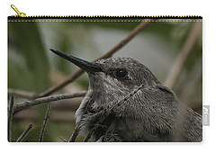 Carry-all Pouch featuring the photograph Baby Humming Bird by Lynn Geoffroy