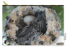 Baby Hummingbird 2 Carry-all Pouch